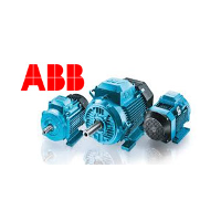 Lokeshelectricals Pvt Ltd Abb Electricalsmotors Cg
